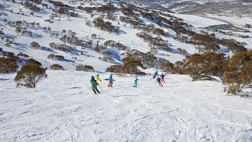 Perisher Ski Resort which includes snow and snow skiing as well as a small group of people