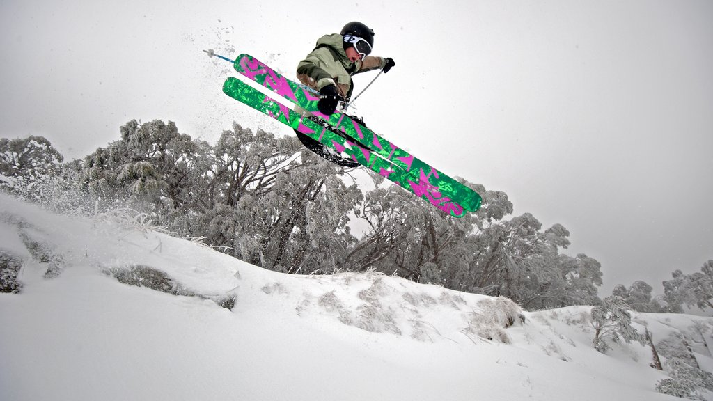 Mt. Buller Ski Slopes featuring snow skiing, mist or fog and snow