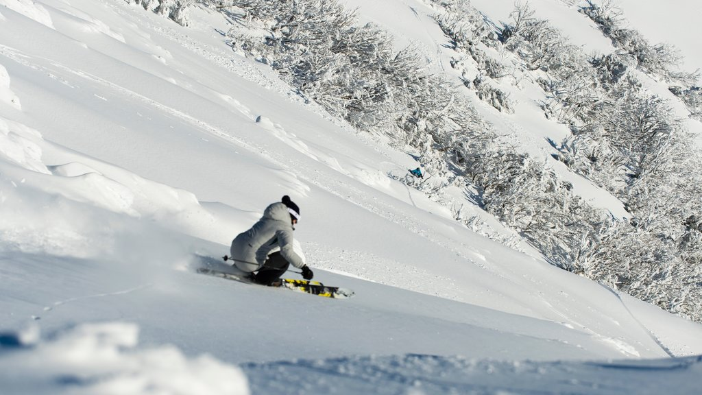 Mt. Buller Ski Slopes showing snow and snow skiing