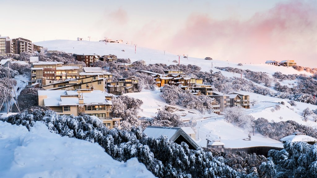 Mt. Buller Ski Slopes featuring a small town or village and snow