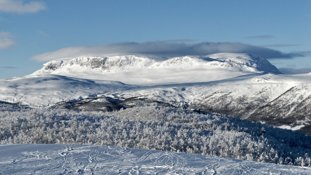Geilo showing snow, mountains and landscape views