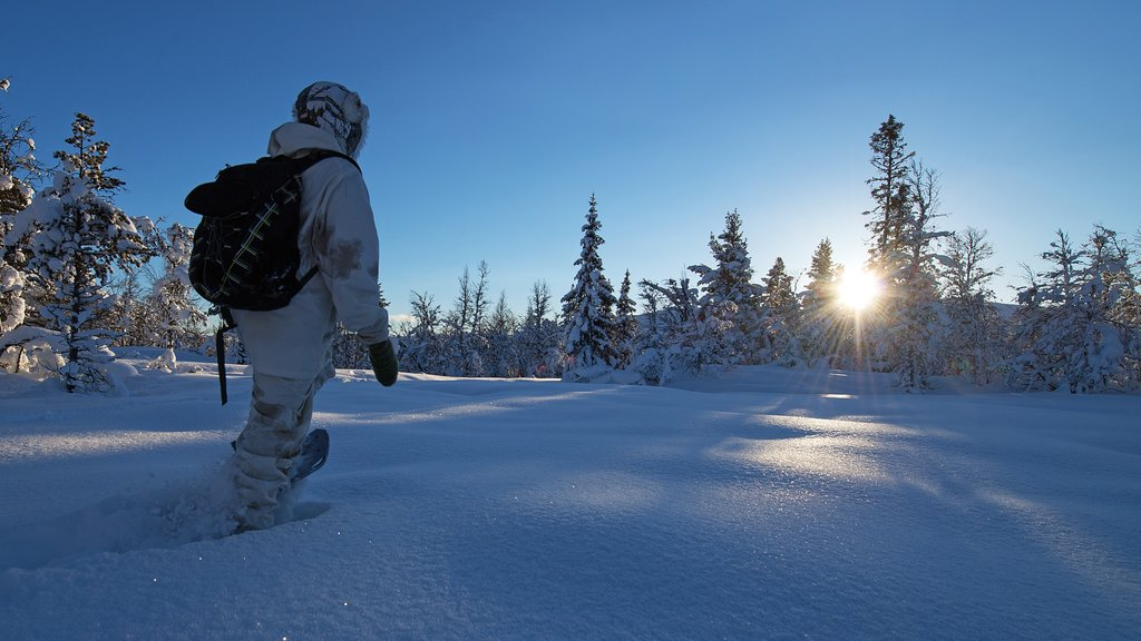Geilo showing a sunset, snow and snow shoeing