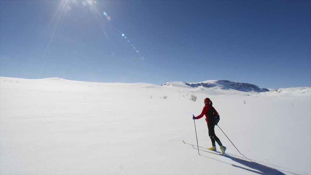 Geilo featuring cross country skiing and snow