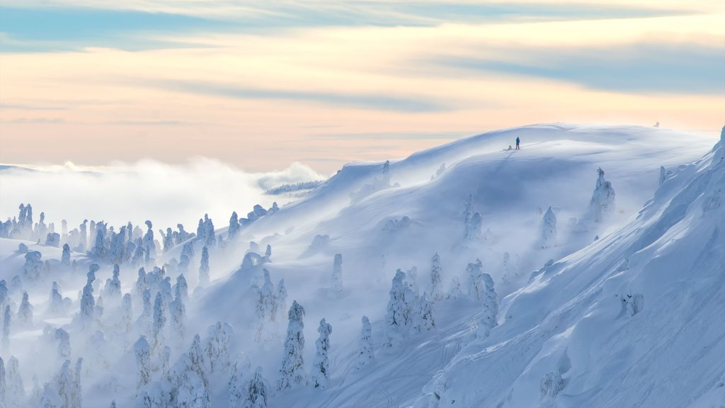 Kvitfjell showing mist or fog, snow and landscape views