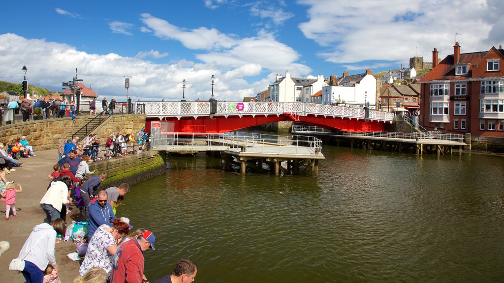 Whitby which includes a bridge and a coastal town as well as a large group of people