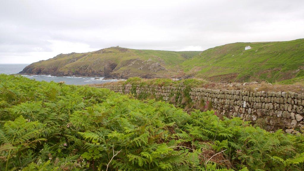 Cape Cornwall showing general coastal views and landscape views