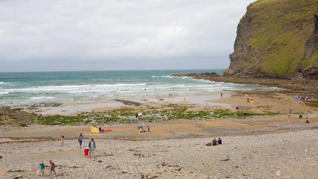 Crackington Haven featuring a beach