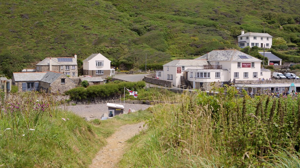 Crackington Haven which includes a coastal town and a house