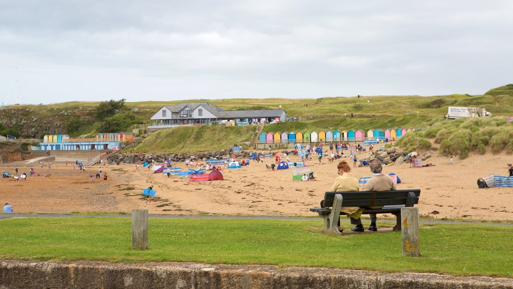 Bude Beach which includes a coastal town and a beach as well as a large group of people