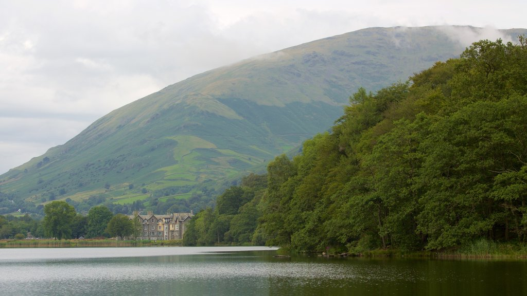 Grasmere featuring forests, mountains and a lake or waterhole