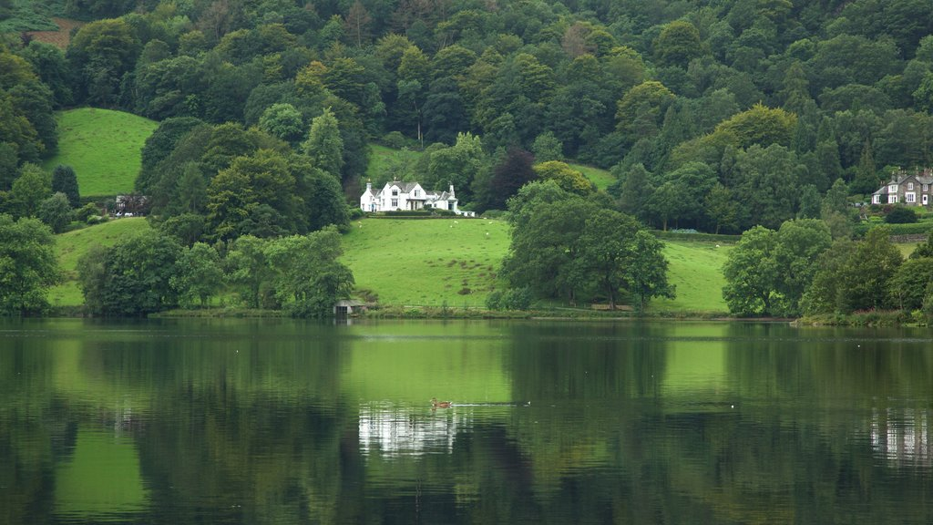 Grasmere featuring a lake or waterhole and forests