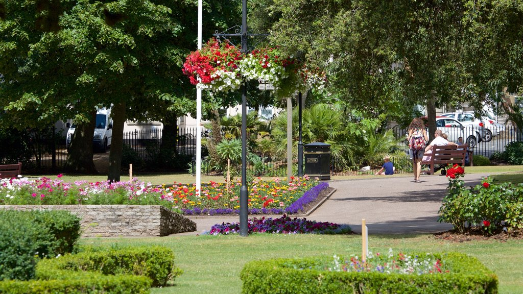 Exmouth featuring a garden and flowers