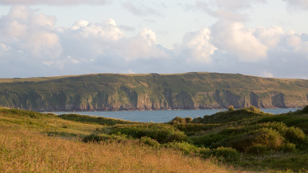 Woolacombe which includes general coastal views, tranquil scenes and landscape views