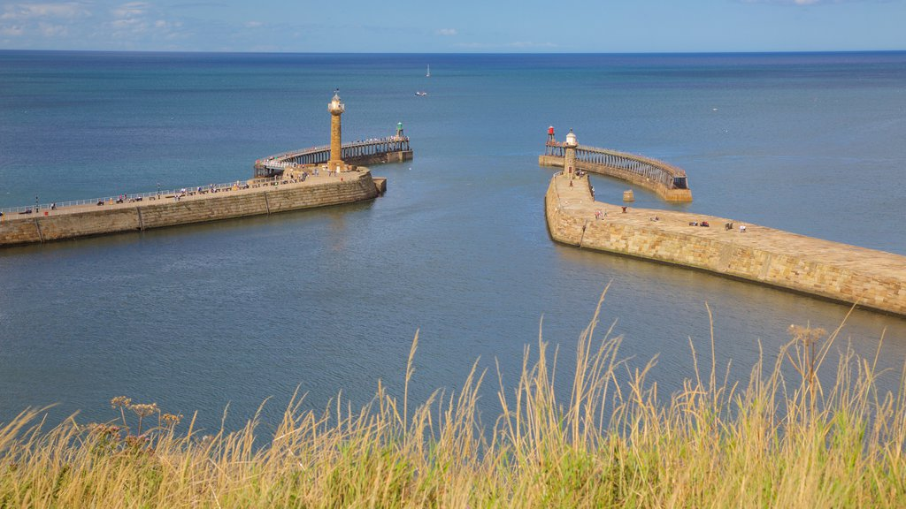 Whitby which includes general coastal views and a bay or harbor