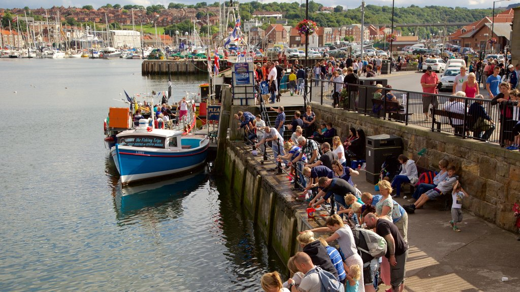 Whitby featuring a coastal town, views and a marina