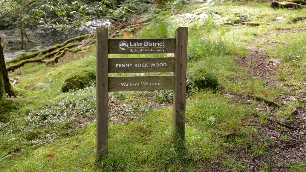 Lake District National Park featuring tranquil scenes and signage