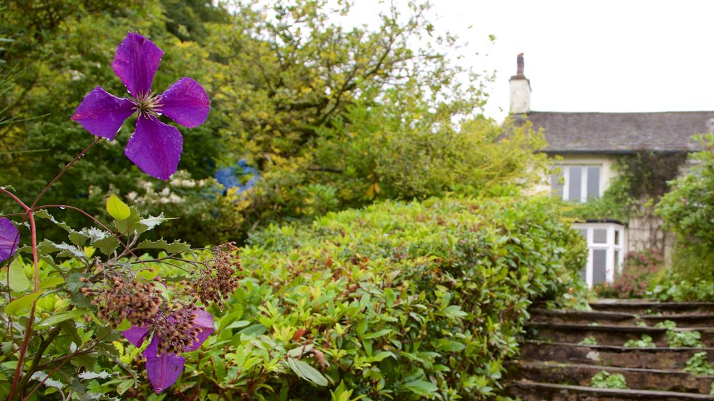 Rydal Mount showing flowers and a garden