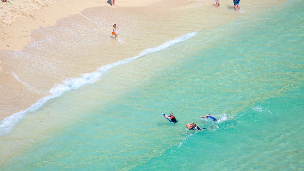Porthcurno Beach showing swimming and a beach as well as a small group of people