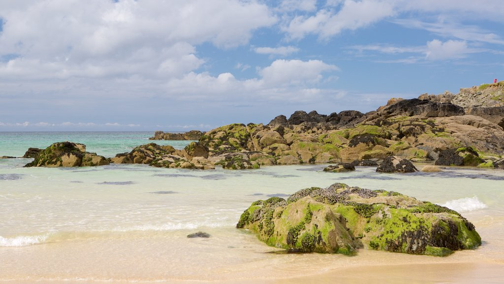 Porthmeor Beach which includes a sandy beach and rocky coastline