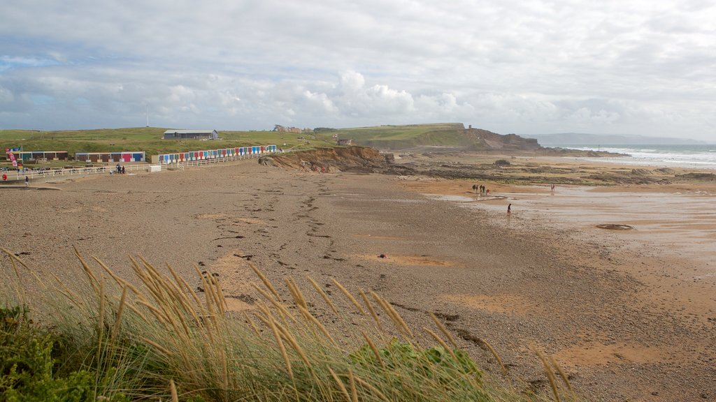 Crooklets Beach which includes general coastal views