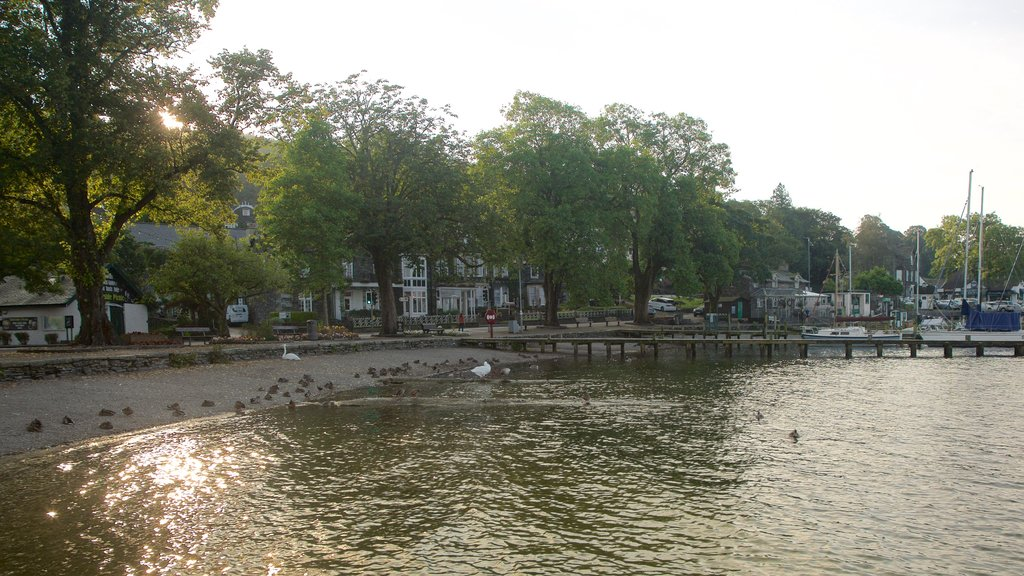 Ambleside which includes boating, bird life and a lake or waterhole