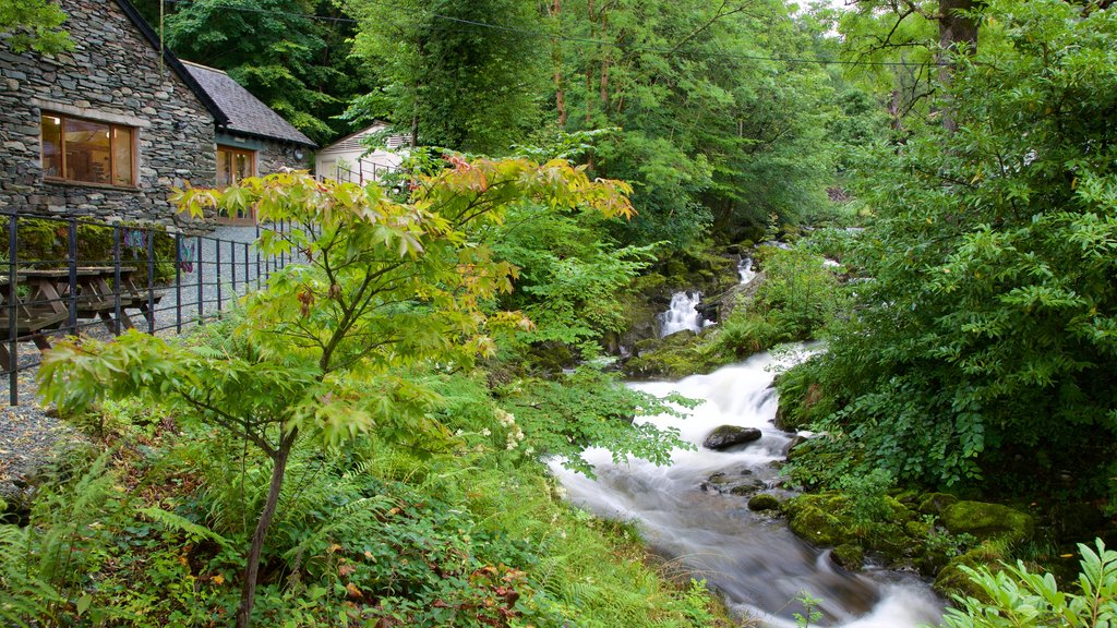 Ambleside featuring a river or creek, a garden and a house
