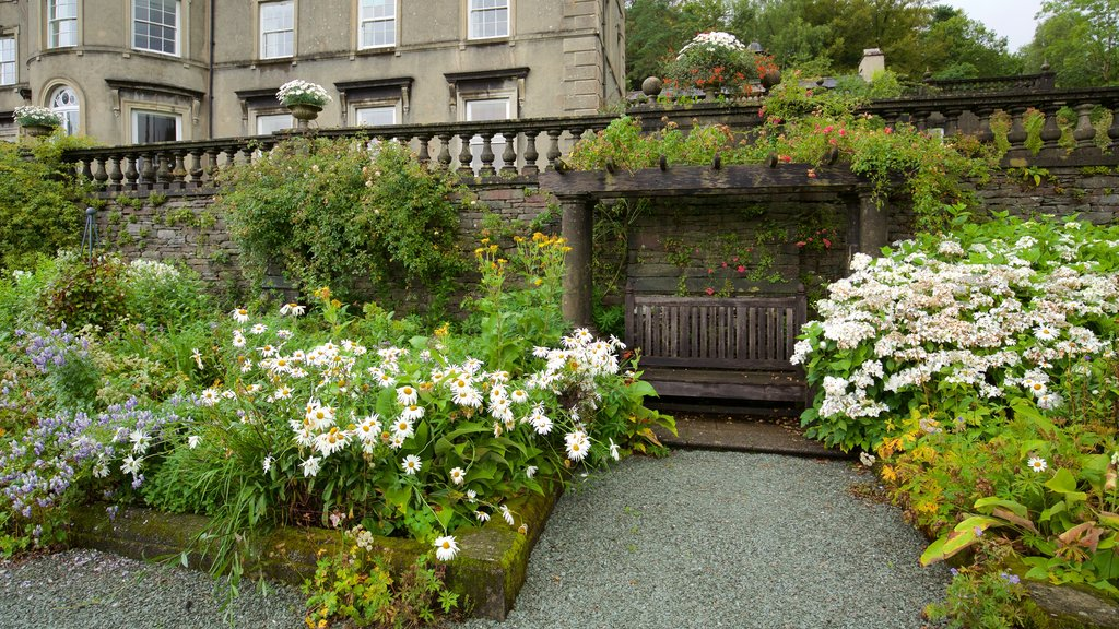 Ambleside featuring flowers and a park
