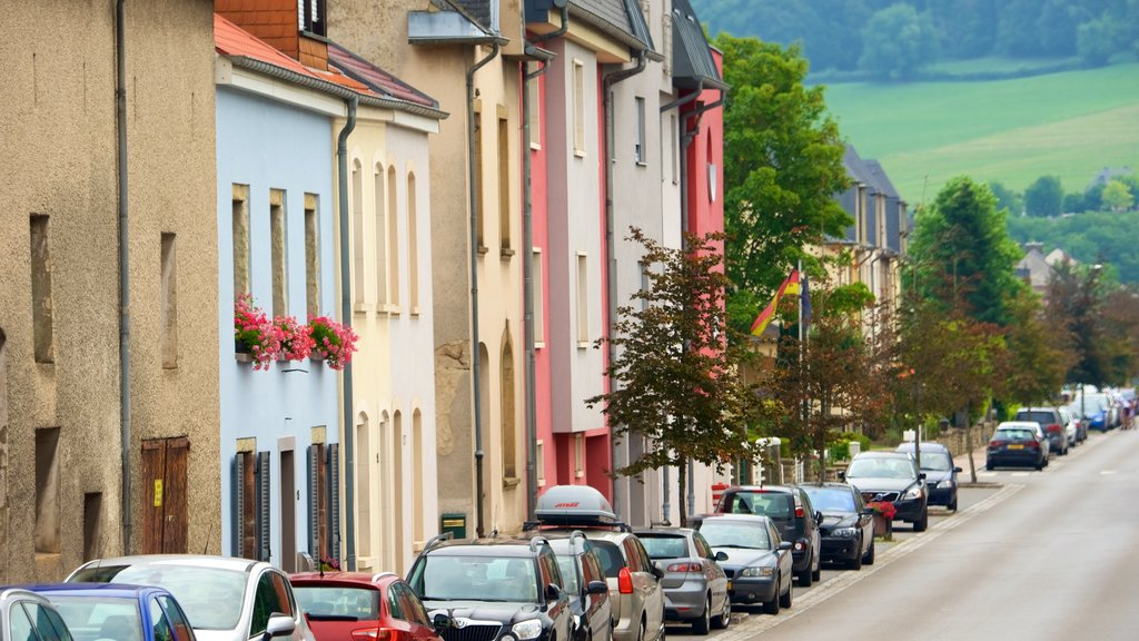 Diekirch which includes a city