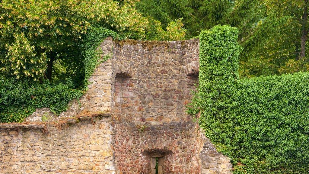 Echternach featuring heritage architecture and a garden