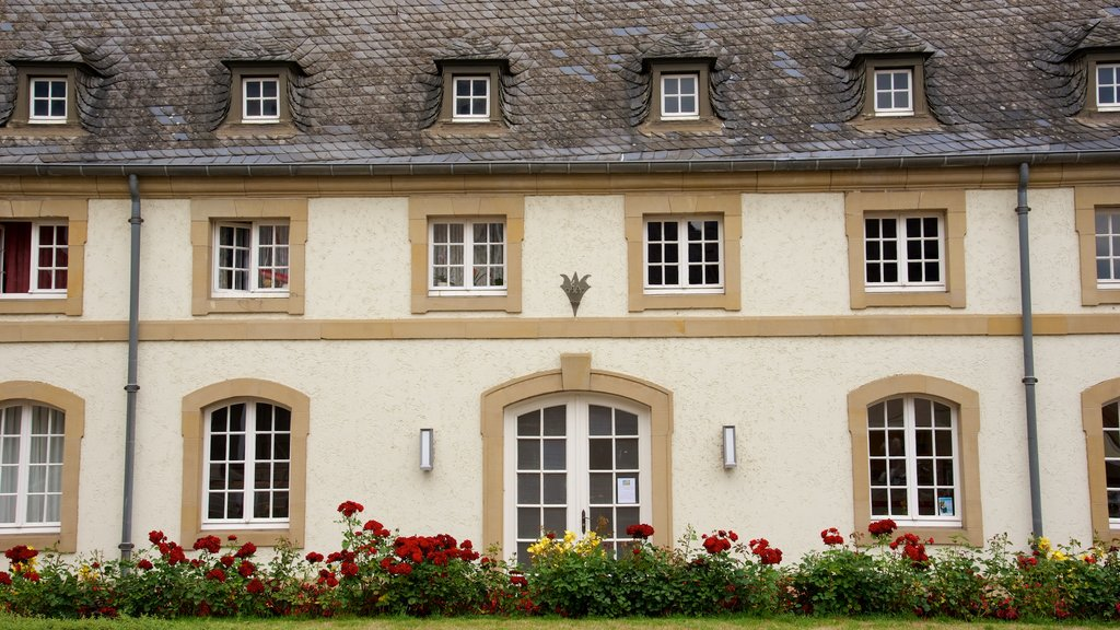 Echternach showing flowers, heritage architecture and a house
