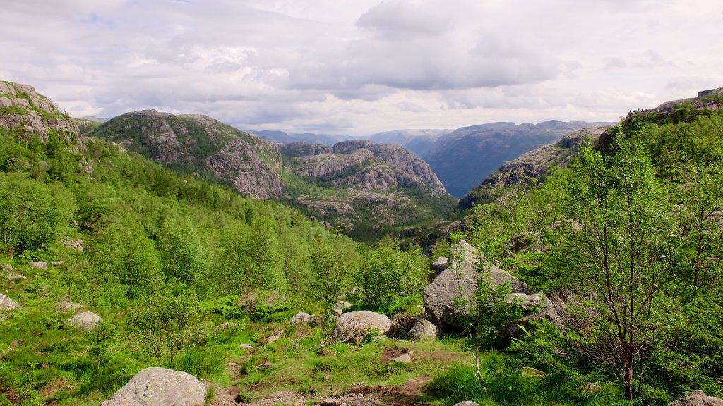 Preikestolen mostrando vistas de paisajes, montañas y escenas forestales