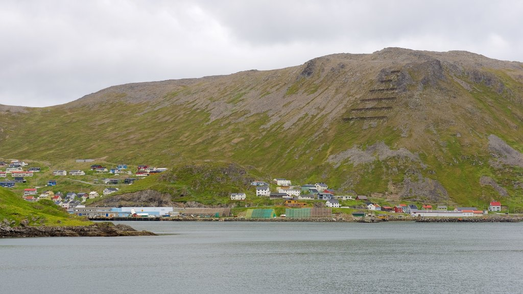 Honningsvag featuring general coastal views, mountains and a coastal town