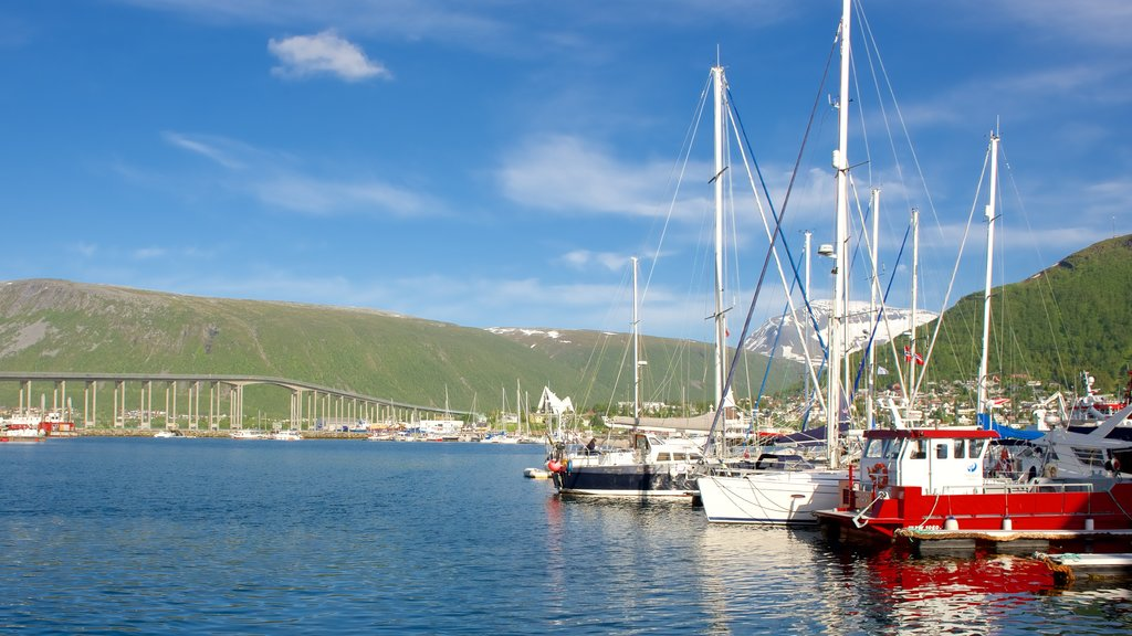 Tromso which includes boating, a marina and a bridge
