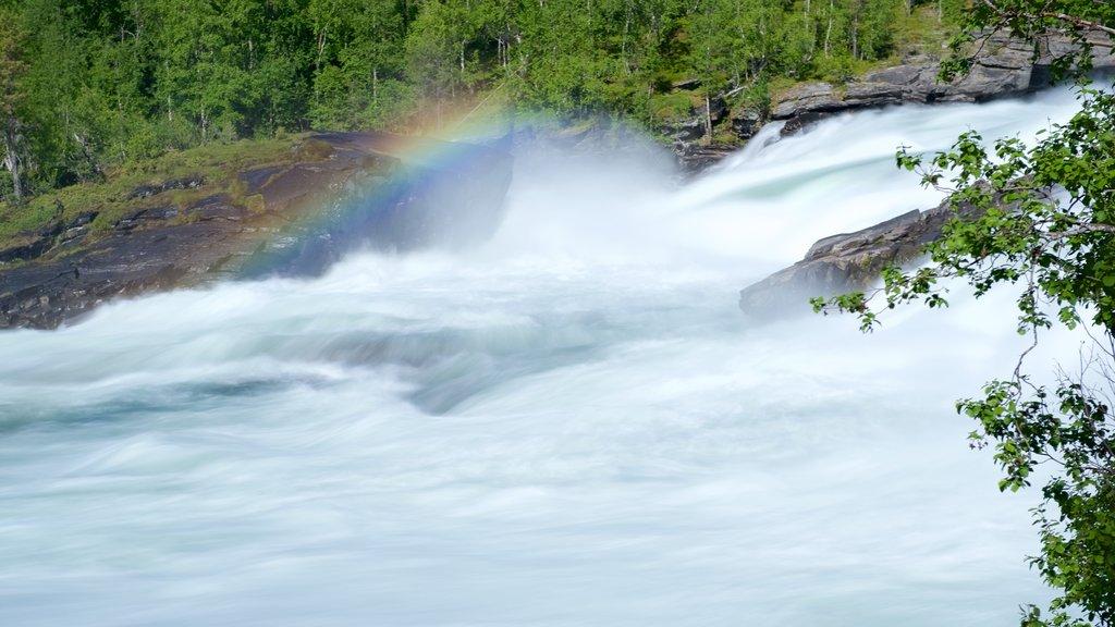Maalselvfossen Waterfall showing tranquil scenes
