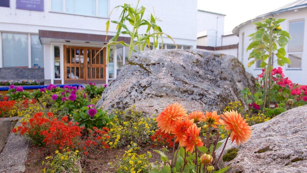 Museo de la Universidad de Tromso mostrando un jardín