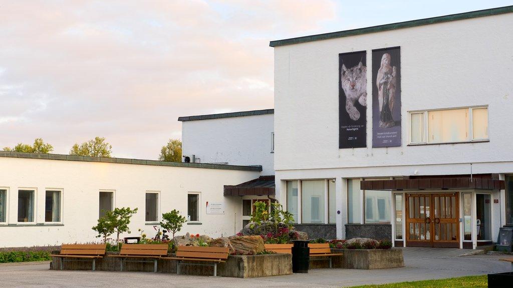 Tromso University Museum featuring signage