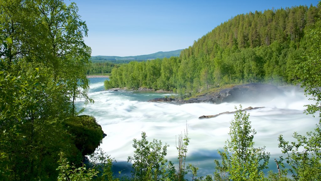 Maalselvfossen Waterfall featuring rapids