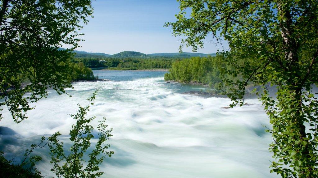 Maalselvfossen Waterfall which includes rapids