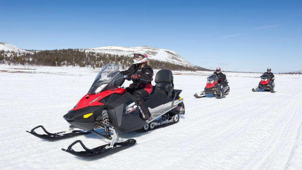 Vemdalen mostrando paseo en motos de nieve y nieve y también un pequeño grupo de personas