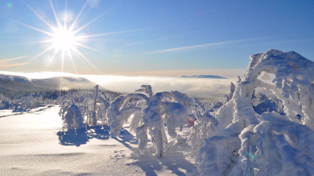 Vemdalen showing snow