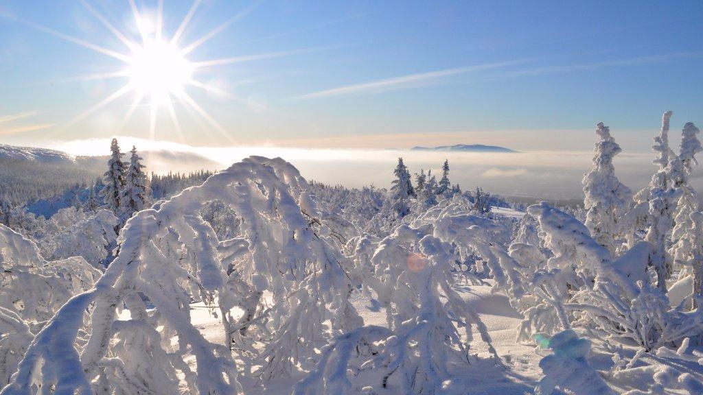 Vemdalen which includes snow
