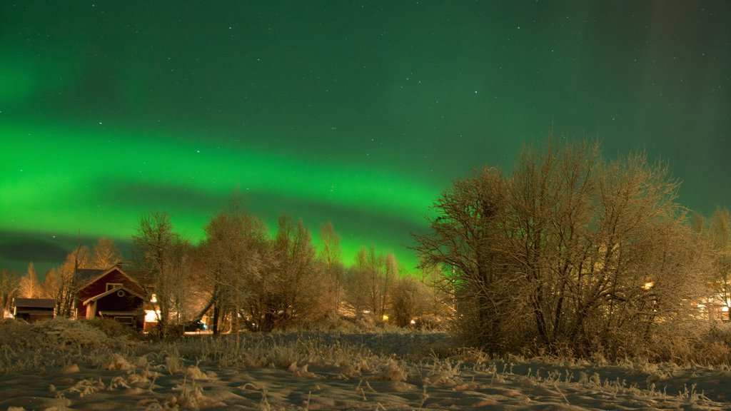 Vemdalen which includes night scenes, northern lights and snow