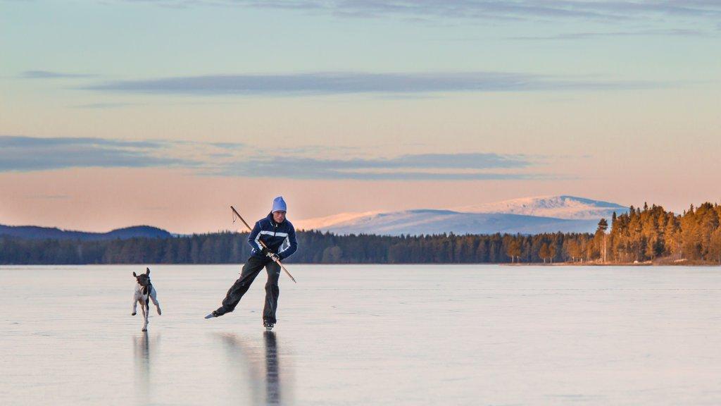 Vemdalen que incluye una puesta de sol y patinaje sobre hielo
