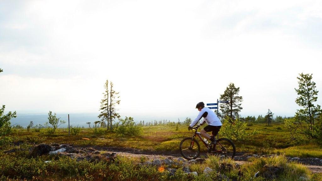 Vemdalen mostrando ciclismo de montaña