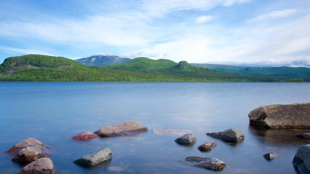 Parque Nacional de Stora Sjofallet ofreciendo un lago o abrevadero