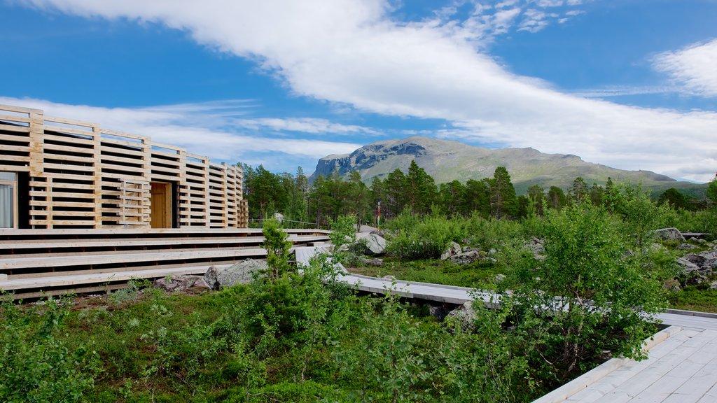 Stora Sjofallet National Park featuring modern architecture
