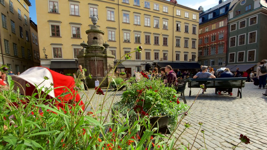 Stortorget which includes a square or plaza and a garden