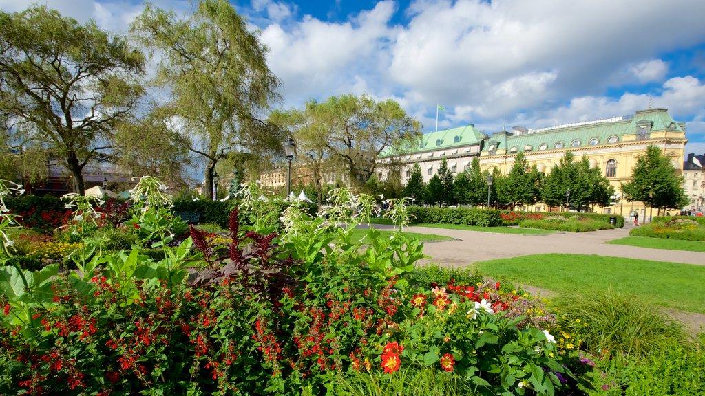King\'s Garden featuring a garden