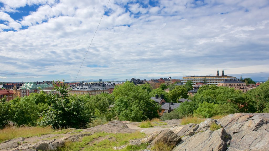 Skinnarvik Park showing a city