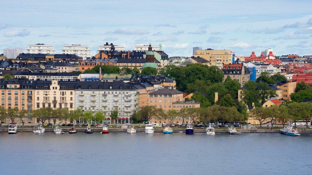 Parque Skinnarvik mostrando un río o arroyo y una ciudad
